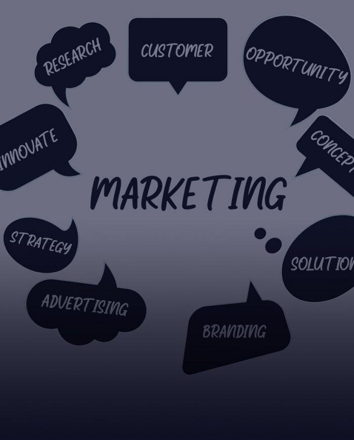 Novle - Marketing